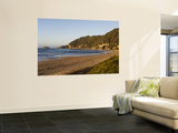 Gericke's Point Along Garden Route Wall Mural by Ariadne Van Zandbergen