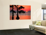 Sunrise at Lake Palourde with Spanish Moss Trees in Silhouette Wall Mural by John Elk III