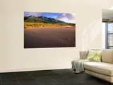 Rippled Sand and Desert Landscape Covered with Rabbitbrush Wall Mural by John Elk III