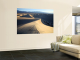 Sand Dunes Near Stovepipe Wells Wall Mural by Feargus Cooney