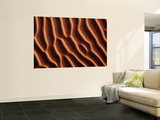 Ripples in the Sand Wall Mural by Frans Lemmens