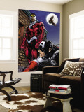 Captain America And The Falcon No.13 Cover: Captain America and Falcon Wall Mural by Dan Jurgens