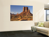 Inner Canyon Landscape, West Mitten Wall Mural by John Elk III