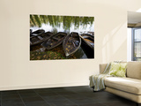 Row Boats Moored at Lakeside at Hever Castle Wall Mural by Doug McKinlay