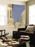 Architectural Detail of Domes of Jumeirah Mosque Wall Mural by Brent Winebrenner