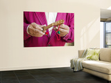 Salesman Tuning Miniature Charanga Wall Mural by Brent Winebrenner