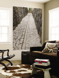 Stonework in Narrow Pedestrian Street, Laid Out in Inca Times Wall Mural by Brent Winebrenner