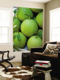 Pomelos for Sale at or Tor Kor Market Mural por Austin Bush