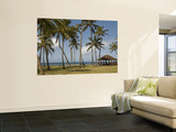 Salt Pond Beach Park Wall Mural by Linda Ching