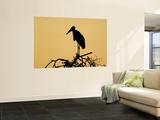 Silhouette of Marabou Stork (Leptoptilos Crumeniferus) Wall Mural by Ariadne Van Zandbergen