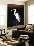 Great Egret on Gibb River Wall Mural by Kerry Lorimer