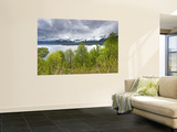 Lago Conguillio Lake Wall Mural by John Elk III