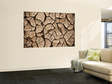 Dried Up River Bed Wall Mural by John Sones