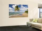 Coconut Grove Beach at Cades Bay, with St. Kitts on Horizon Veggmaleri av Greg Johnston
