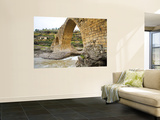 Historic Delal Bridge ('Beautiful Bridge'), Kurdistan Wall Mural by Tony Wheeler