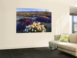 Flowers Growing on Desert, Anza Borrego Desert State Park, California, USA Premium Wall Mural by Adam Jones