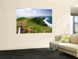 Kamui Peninsula Path and Coastline Wall Mural by Paul Dymond