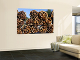 Bundles of Dried Kelp (Cochayuyo) for Sale at Seaside Stall Wall Mural by Paul Kennedy