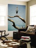 Yellow-Billed Stork, Lake Nzelekela Wall Mural by Mark Daffey