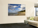 Deadman's Beach Towards Dune Rocks Wall Mural by Sally Dillon