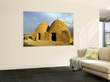 Conical Mud-Brick Beehive Houses, Central Syria Wall Mural by Patrick Horton
