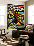 Marvel Comics Retro: The Amazing Spider-Man Comic Book Cover No.135, Return of the Punisher! (aged) Wall Mural