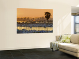 Yachts across San Diego Bay at Sunrise, Looking Towards Downtown Wall Mural by Witold Skrypczak