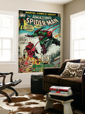 Marvel Comics Retro: The Amazing Spider-Man Comic Book Cover 122, the Green Goblin (aged) Wall Mural
