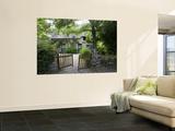 Thatched Cottage with Green Doors in Restored Village of Kerhinet, Briere National Park Fototapete von Barbara Van Zanten