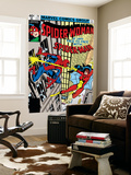 Spider-Woman No.20 Cover: Spider Woman and Spider-Man Fighting Wall Mural by Frank Springer