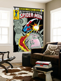 The Spectacular Spider-Man Cover: Spider-Man, Peter Parker, and Human Torch Wall Mural by Mike Zeck