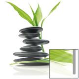 Feng Shui Balance - Sanat
