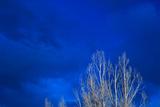 Night Sky Impressão fotográfica por Steve Gadomski