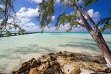 View of the Rum Point Jetty, Grand Cayman Island Photographic Print by George Oze