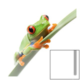 Crazy Frog I Print