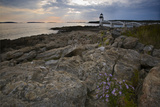 Marshall Point Shoreline, Port Clyde Maine Photographic Print by George Oze