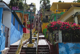 Colorful Houses, Gurabo, Puerto Rico Photographic Print by George Oze