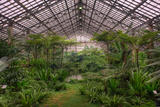 Garfield Park Conservatory Main Pond Photographic Print by Steve Gadomski