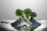 Broccoli FreshSplash Photographic Print by Steve Gadomski