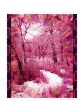 Through The Trees Arte por Ruth Palmer