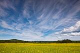 Northern Wisconsin Field Impressão fotográfica por Steve Gadomski