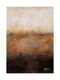 Sepia Wetlands Photographic Print by Ruth Palmer