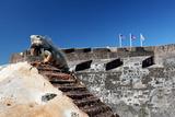 Iguana Basking, San Cristobal Fort, San Juan, PR Photographie par George Oze