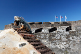 Iguana Basking, San Cristobal Fort, San Juan, PR Photographic Print by George Oze