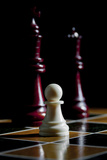 Chess Pieces Photographic Print by Charles Bowman