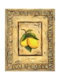 Italian Fruits Lemons Giclee Print by Marilyn Dunlap
