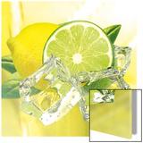 Citron jaune et citron vert sur glace Affiches