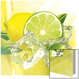 Fresh Lemon & Lime Kunst
