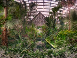 Garfield Park Conservatory Reflecting Pool Photographic Print by Steve Gadomski