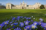 Cambridge Flowers Impressão fotográfica por Charles Bowman
